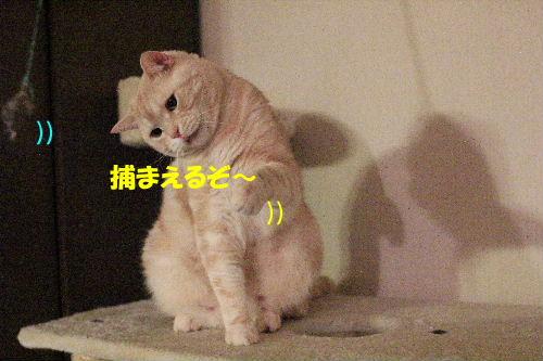 IMG_9226.JPG